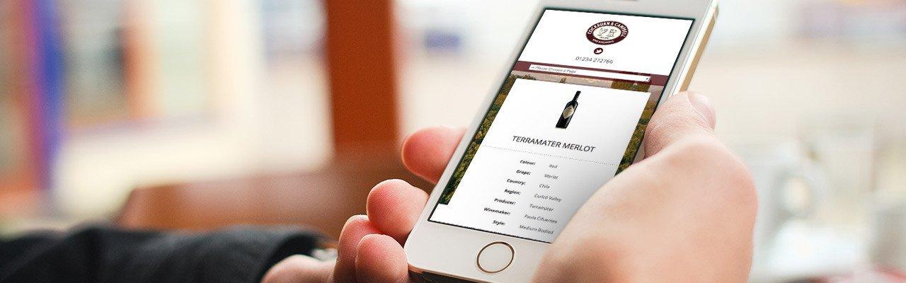 Website Design in Bedfordshire by Webster Internet