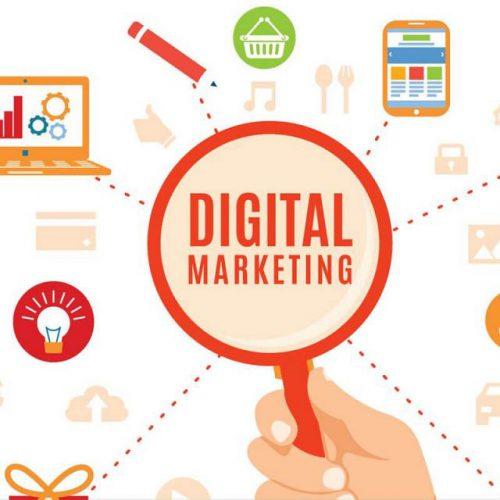 Webster Internet Digital Marketing Services